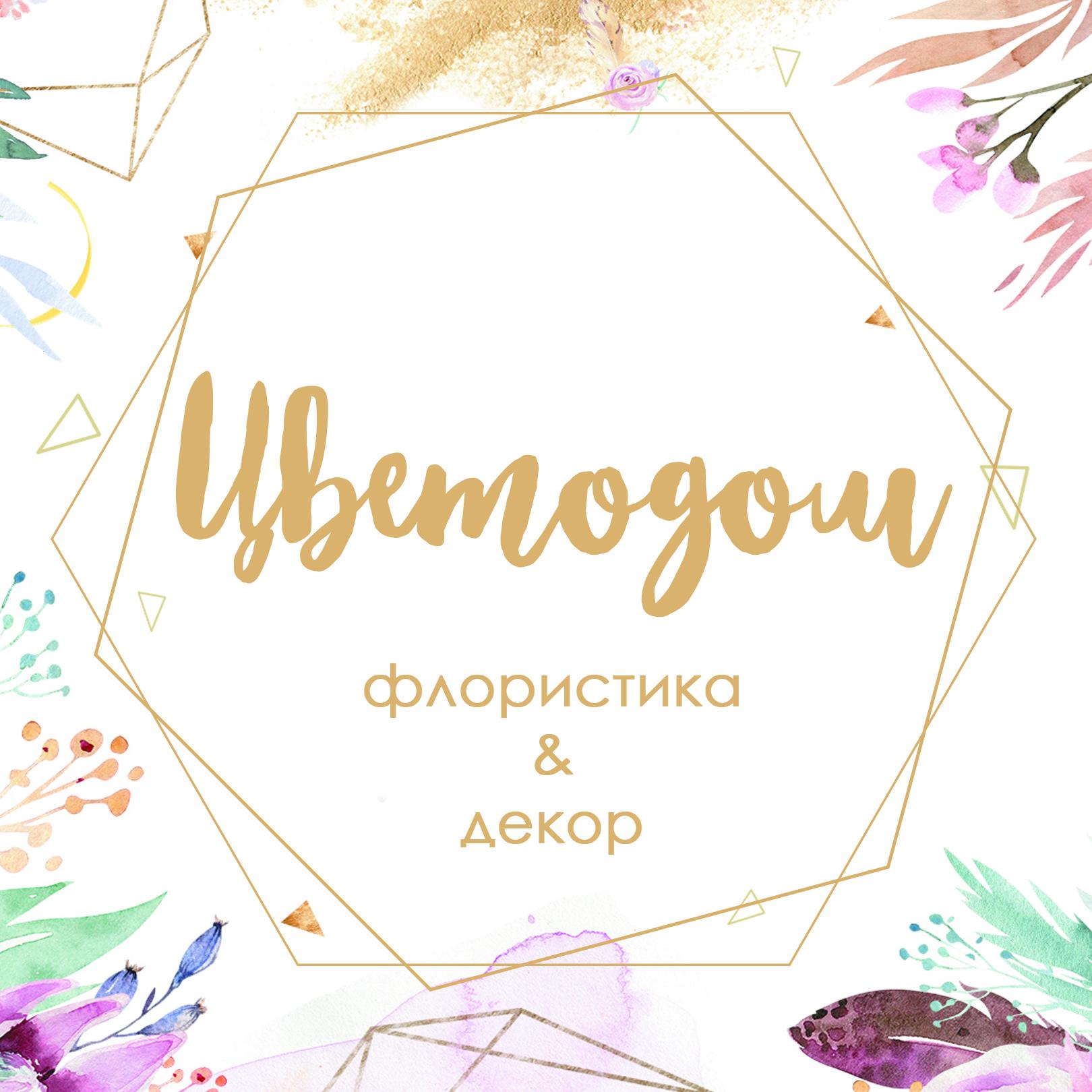ИП Васильев Виталий Николаевич