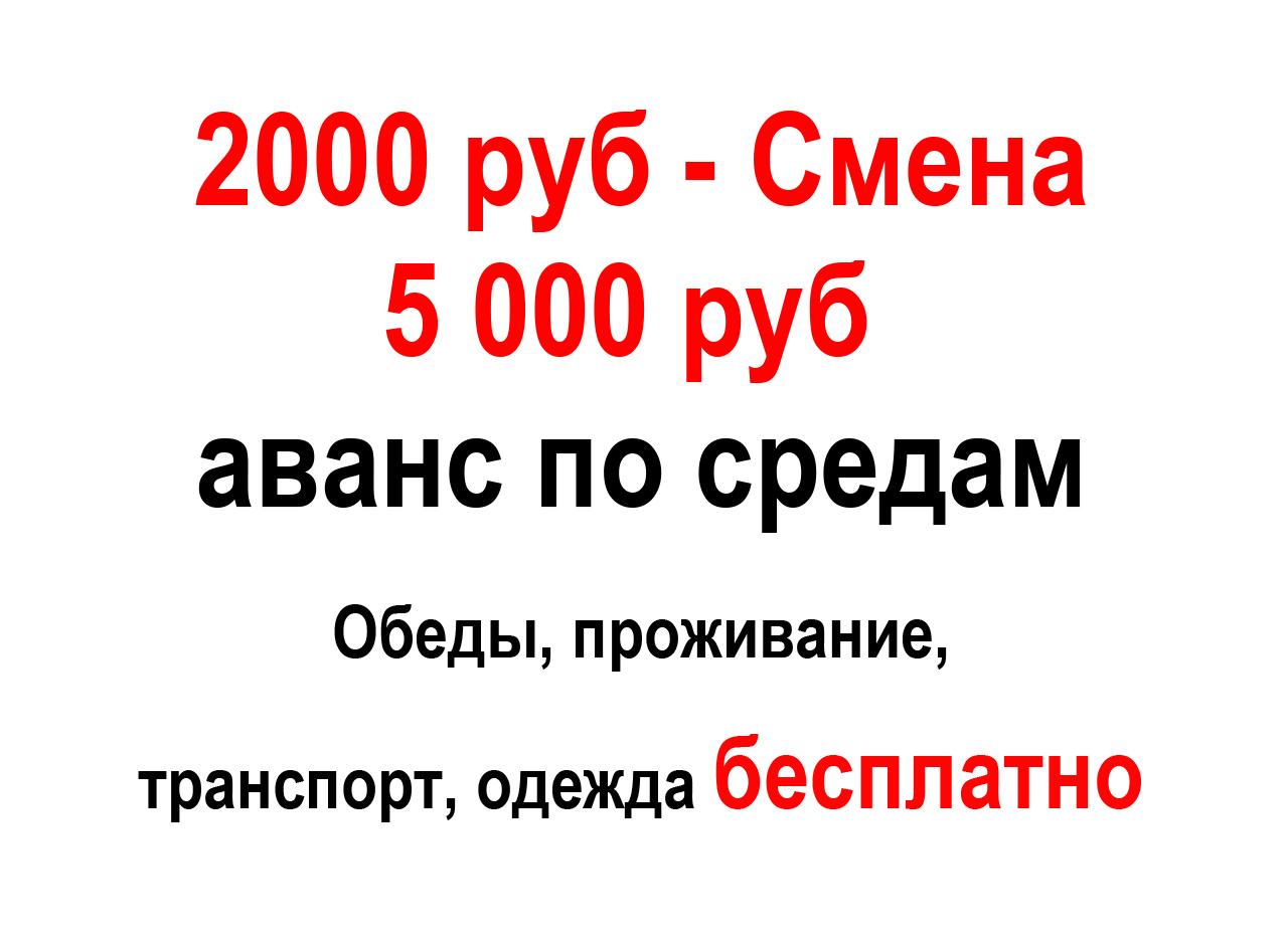 """ООО """"Стеллар груп"""""""